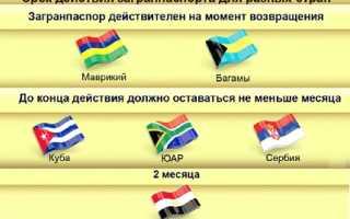 Загранпаспорт гражданина РФ: как проверить на действительность