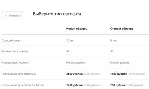 Где и как сделать загранпаспорт в Москве – цена и сроки оформления