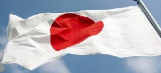 Налоговая система в Японии: уровни, обязательства и льготы