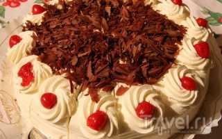 Шварцвальдский торт – сладкая визитная карточка Германии