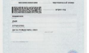 Виза в Польшу: оформление, документы и стоимость в Москве