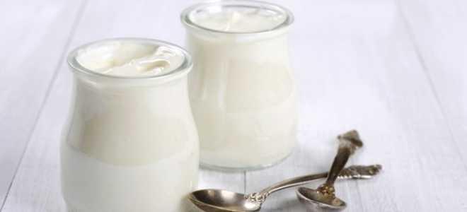 Как сделать закваску для йогурта в домашних условиях
