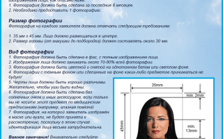 Требования к фото на загранпаспорт для старого и нового образца: размер, количество и формат