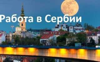 Работа и вакансии в Сербии в 2020 году