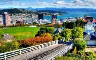 Эмиграция в Новую Зеландию в 2021 году, как переехать на ПМЖ
