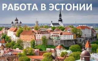 Как найти работу в Эстонии в 2020 году
