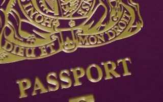 Разрешено ли двойное и множественное гражданство в РФ