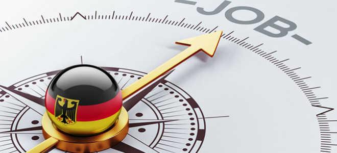 Самые популярные и высокооплачиваемые профессии в Германии