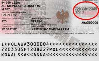 Зачем нужен номер Regon и как его получить в Польше