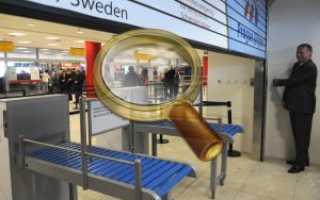 Таможенные правила Чехии: что можно и нельзя ввозить в страну