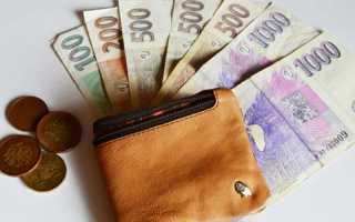 Уровень средней и минимальной зарплаты в Чехии для иностранцев