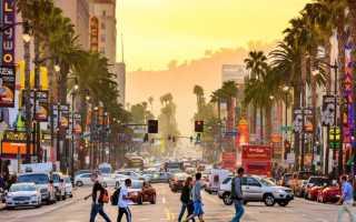 Калифорнийский университет в Лос-Анджелесе: преимущества и перспективы